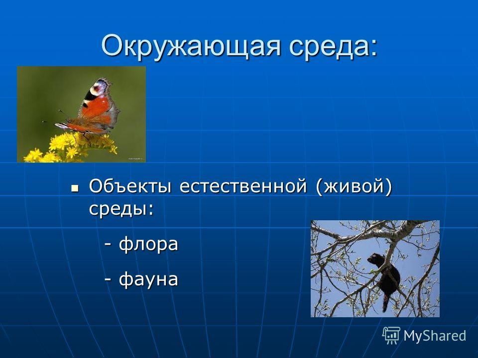 Окружающая среда: Объекты естественной (живой) среды: Объекты естественной (живой) среды: - флора - флора - фауна - фауна