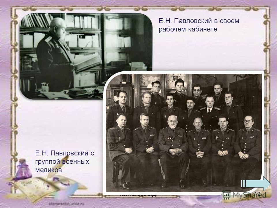 Колтакова Е.Д.12 Е.Н. Павловский в своем рабочем кабинете Е.Н. Павловский с группой военных медиков