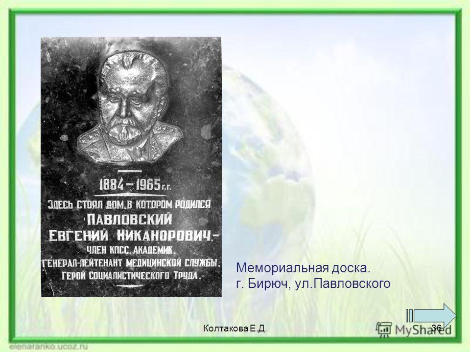 Мемориальная доска. г. Бирюч, ул.Павловского Колтакова Е.Д.36