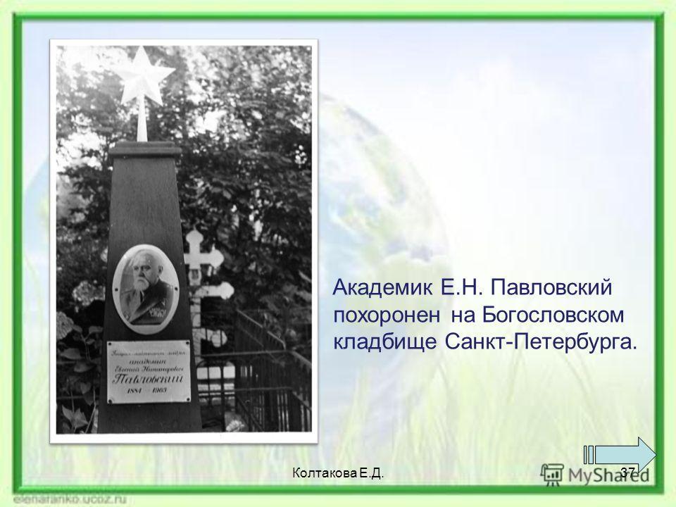 Академик Е.Н. Павловский похоронен на Богословском кладбище Санкт-Петербурга. Колтакова Е.Д.37