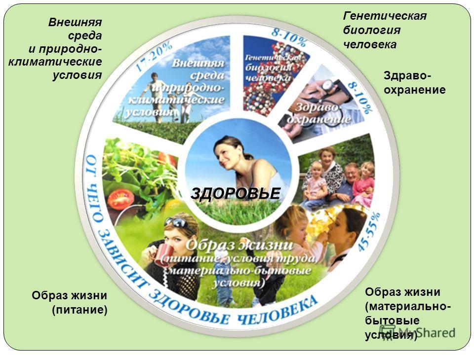Внешняя среда и природно- климатические условия Генетическая биология человека Здраво- охранение Образ жизни (материально- бытовые условия) Образ жизни (питание) ЗДОРОВЬЕ