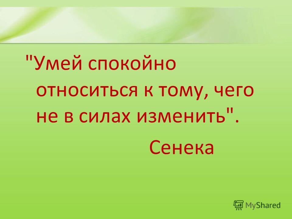Умей спокойно относиться к тому, чего не в силах изменить. Сенека