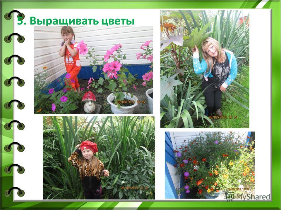 5. Выращивать цветы