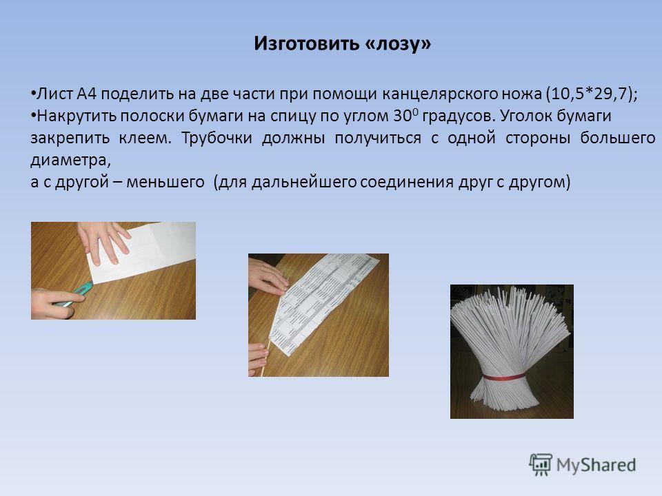 Изготовить «лозу» Лист А4 поделить на две части при помощи канцелярского ножа (10,5*29,7); Накрутить полоски бумаги на спицу по углом 30 0 градусов. Уголок бумаги закрепить клеем. Трубочки должны получиться с одной стороны большего диаметра, а с друг