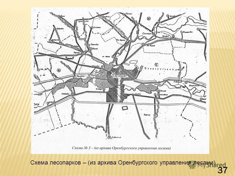 Схема лесопарков – (из архива Оренбургского управления лесами) 37