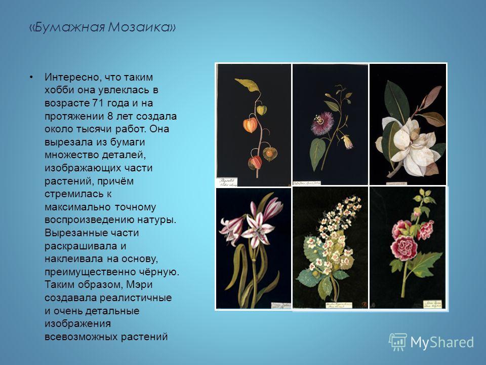 «Бумажная Мозаика» Интересно, что таким хобби она увлеклась в возрасте 71 года и на протяжении 8 лет создала около тысячи работ. Она вырезала из бумаги множество деталей, изображающих части растений, причём стремилась к максимально точному воспроизве
