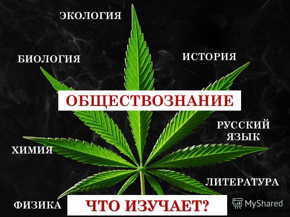 ХИМИЯ БИОЛОГИЯ ИСТОРИЯ ЭКОЛОГИЯ РУССКИЙ ЯЗЫК ЛИТЕРАТУРА ФИЗИКА