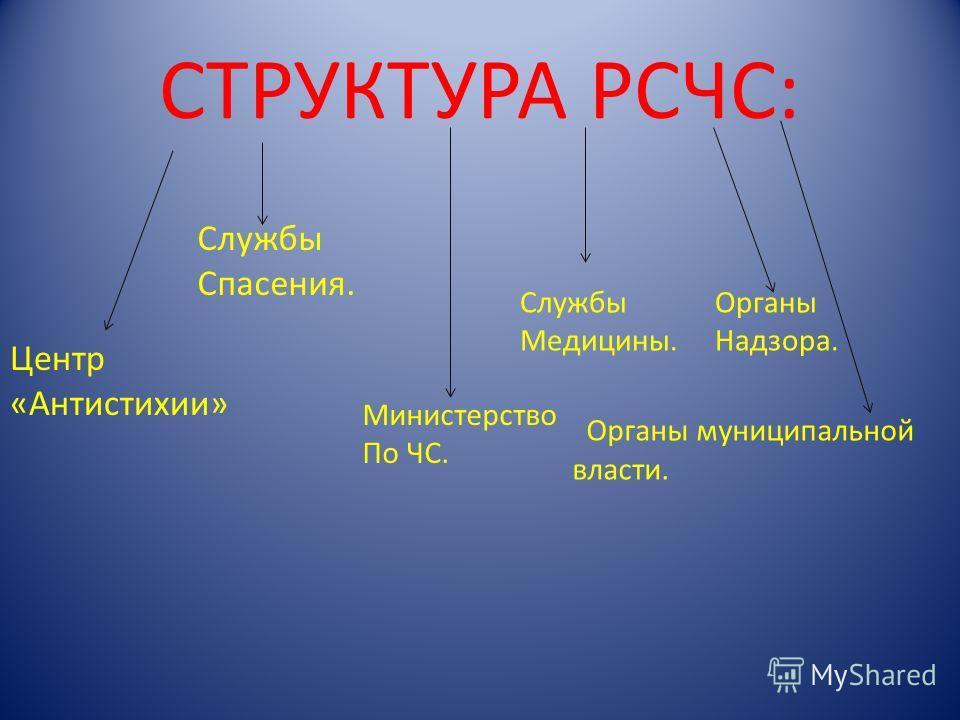 СИСТЕМЫ РСЧС: