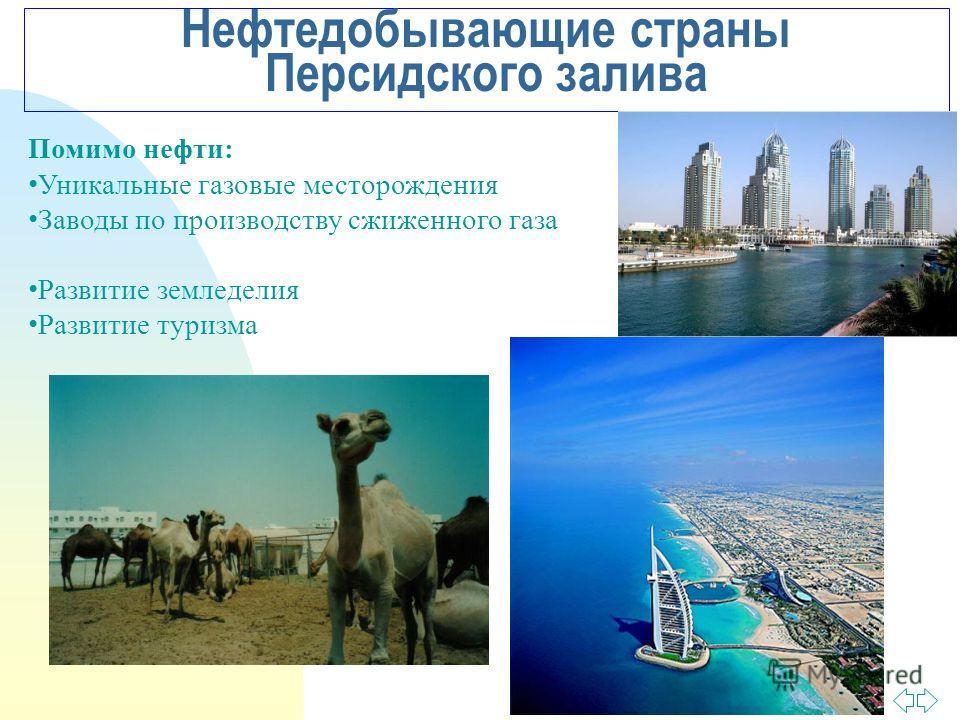 Перейти на первую страницу Нефтедобывающие страны Персидского залива Помимо нефти: Уникальные газовые месторождения Заводы по производству сжиженного газа Развитие земледелия Развитие туризма