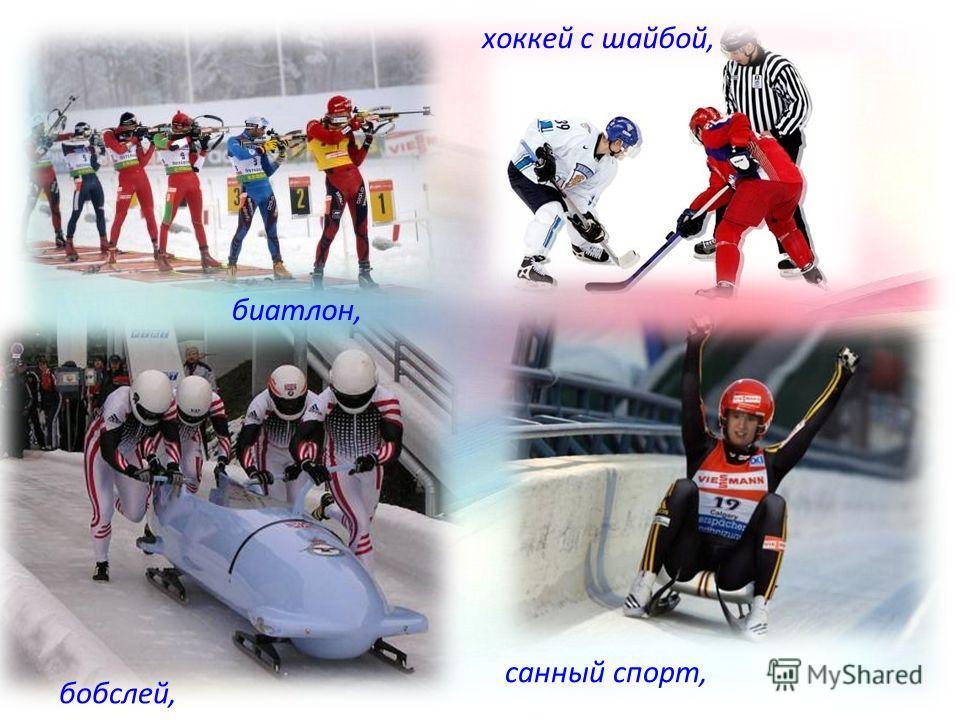 биатлон, бобслей, хоккей с шайбой, санный спорт,