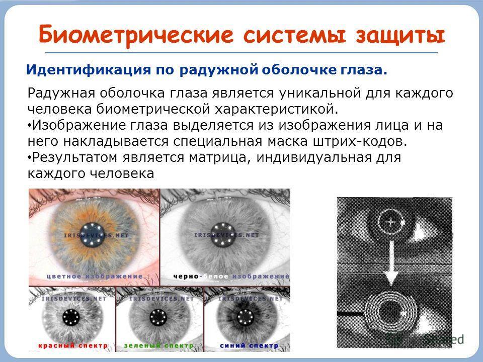 Биометрические системы защиты Радужная оболочка глаза является уникальной для каждого человека биометрической характеристикой. Изображение глаза выделяется из изображения лица и на него накладывается специальная маска штрих-кодов. Результатом являетс
