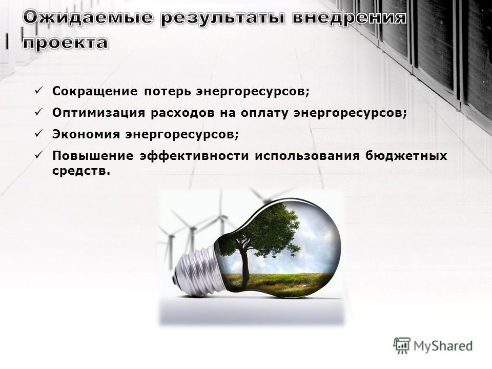 Сокращение потерь энергоресурсов; Оптимизация расходов на оплату энергоресурсов; Экономия энергоресурсов; Повышение эффективности использования бюджетных средств.