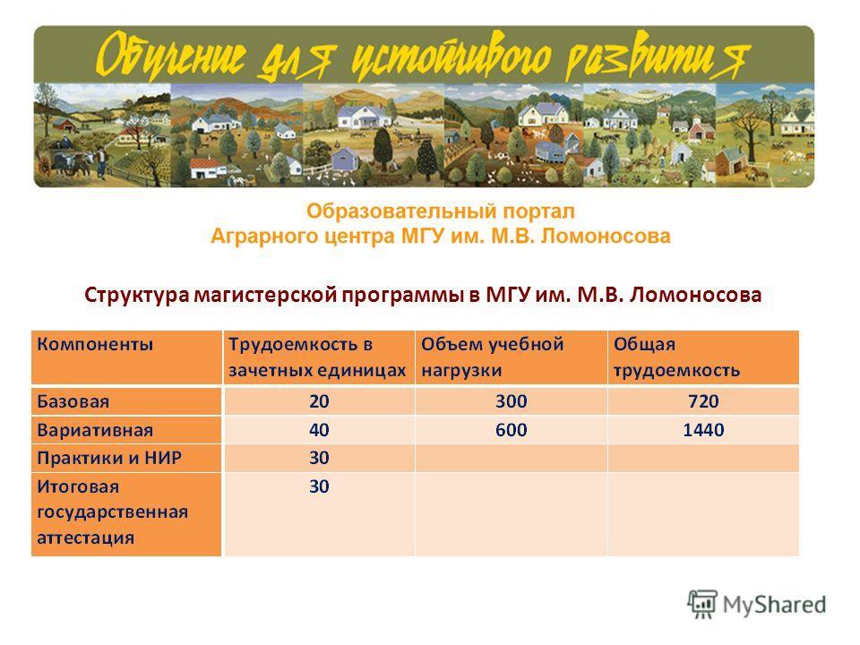 Структура магистерской программы в МГУ им. М.В. Ломоносова