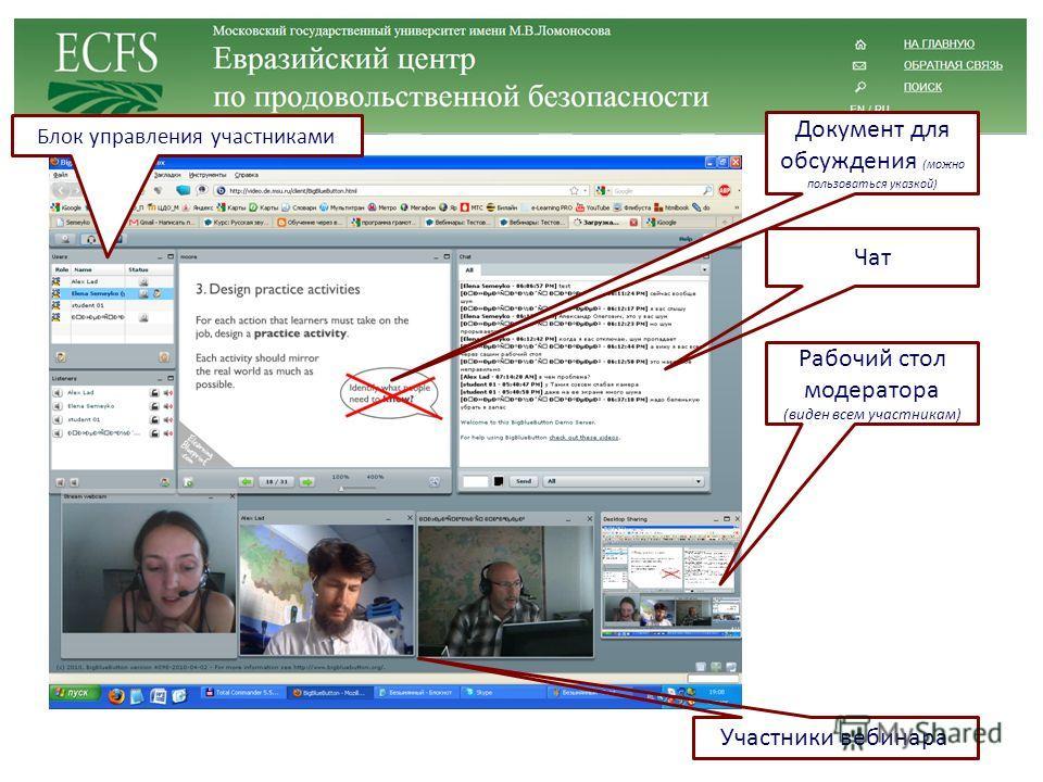 Рабочий стол модератора (виден всем участникам) Участники вебинара Чат Блок управления участниками Документ для обсуждения (можно пользоваться указкой)