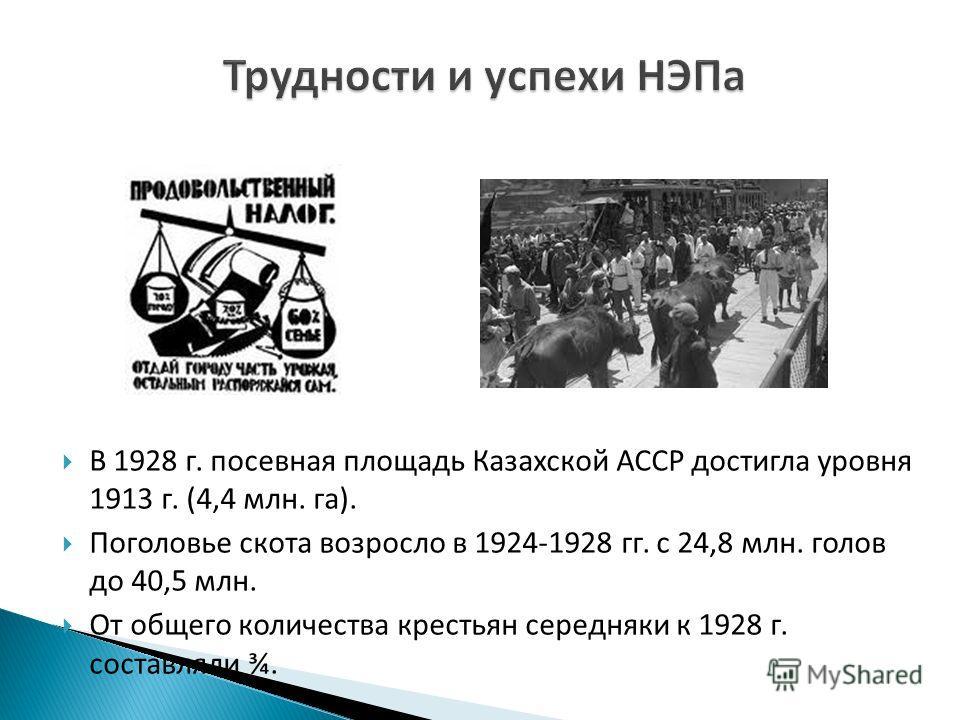 В 1928 г. посевная площадь Казахской АССР достигла уровня 1913 г. (4,4 млн. га). Поголовье скота возросло в 1924-1928 гг. с 24,8 млн. голов до 40,5 млн. От общего количества крестьян середняки к 1928 г. составляли ¾.