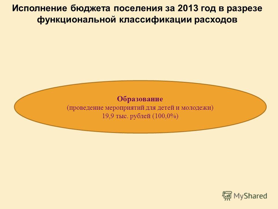 Исполнение бюджета поселения за 2013 год в разрезе функциональной классификации расходов Образование (проведение мероприятий для детей и молодежи) 19,9 тыс. рублей (100,0%)