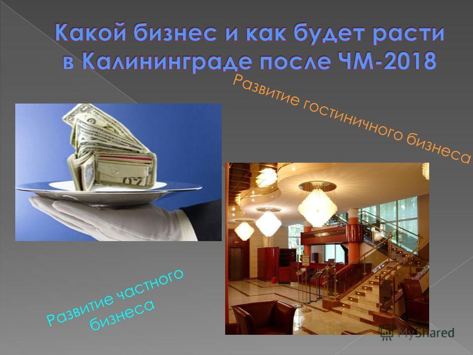 Развитие гостиничного бизнеса Развитие частного бизнеса