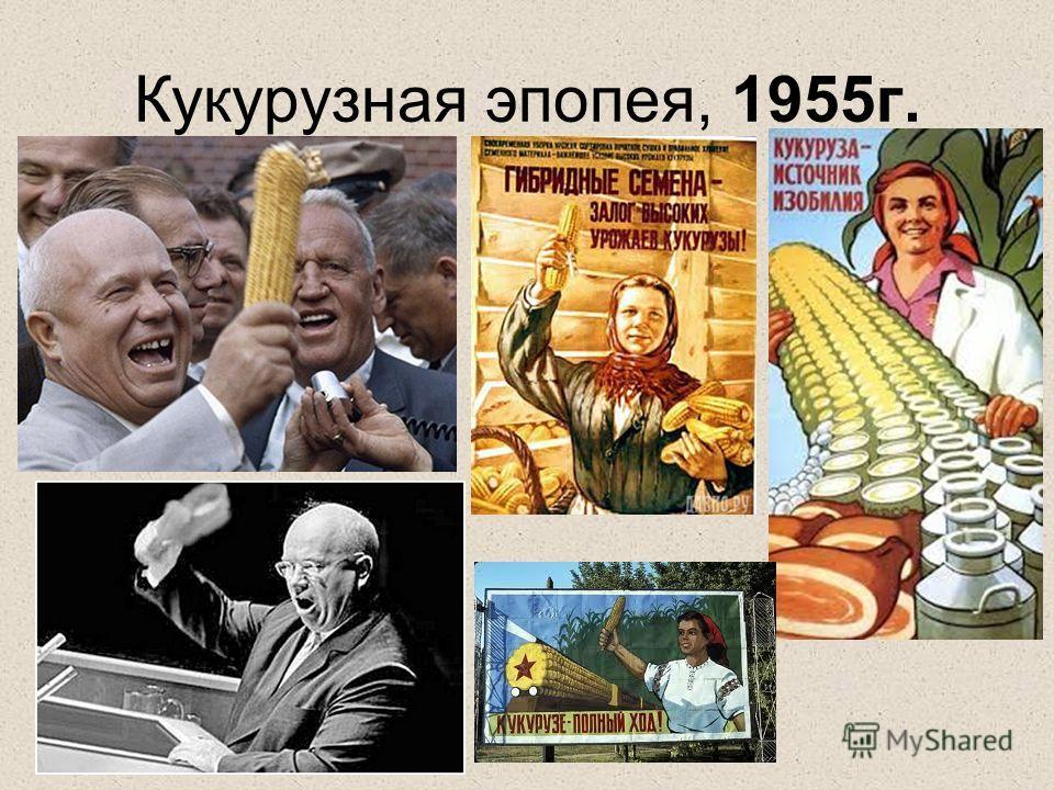 Кукурузная эпопея, 1955г.
