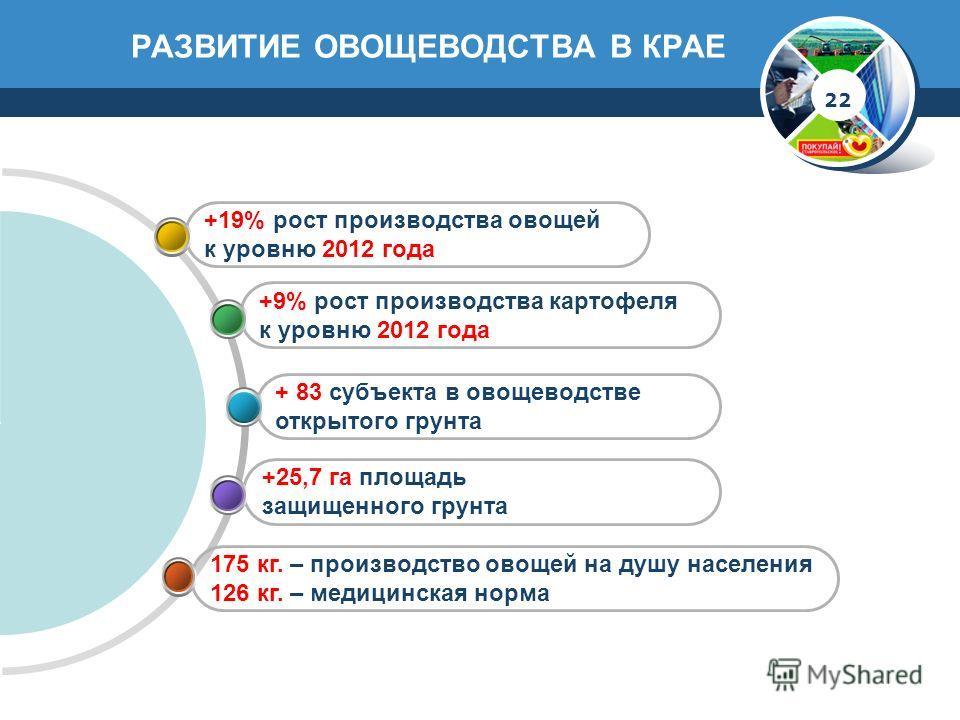 РАЗВИТИЕ ОВОЩЕВОДСТВА В КРАЕ 175 кг. – производство овощей на душу населения 126 кг. – медицинская норма +25,7 га площадь защищенного грунта + 83 субъекта в овощеводстве открытого грунта +9% рост производства картофеля к уровню 2012 года +19% рост пр