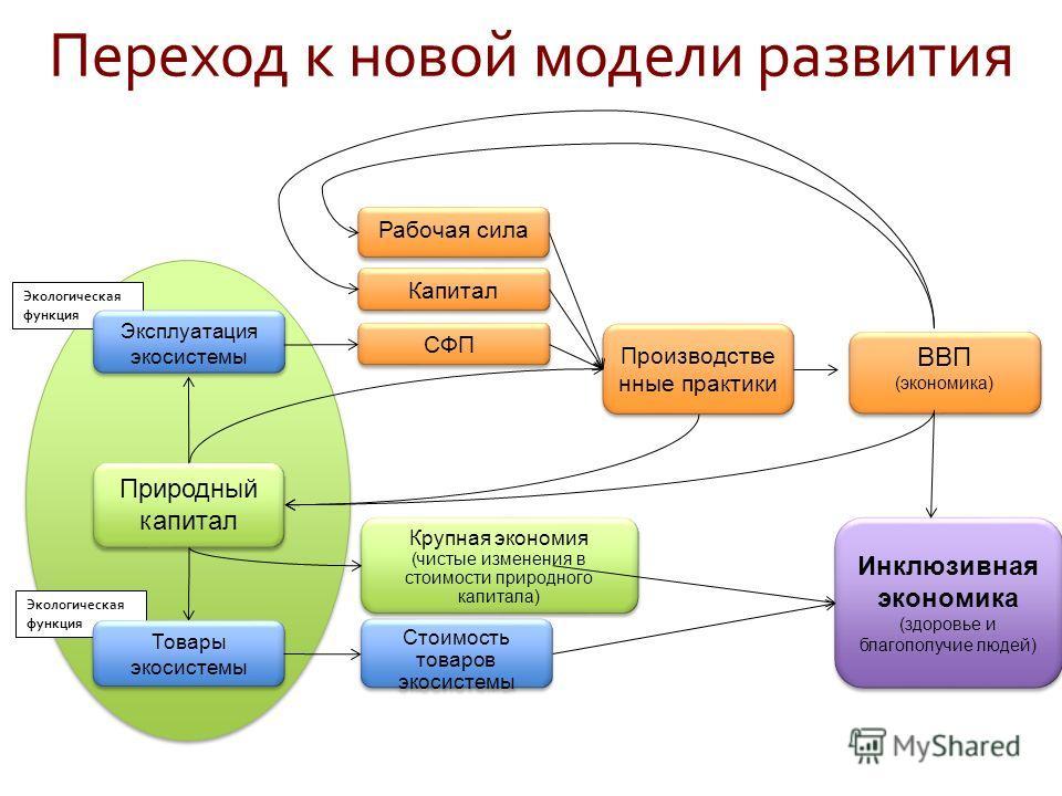Экологическая функция Природный капитал Эксплуатация экосистемы СФП Рабочая сила Капитал Крупная экономия (чистые изменения в стоимости природного капитала) Производстве нные практики ВВП (экономика) ВВП (экономика) Инклюзивная экономика (здоровье и