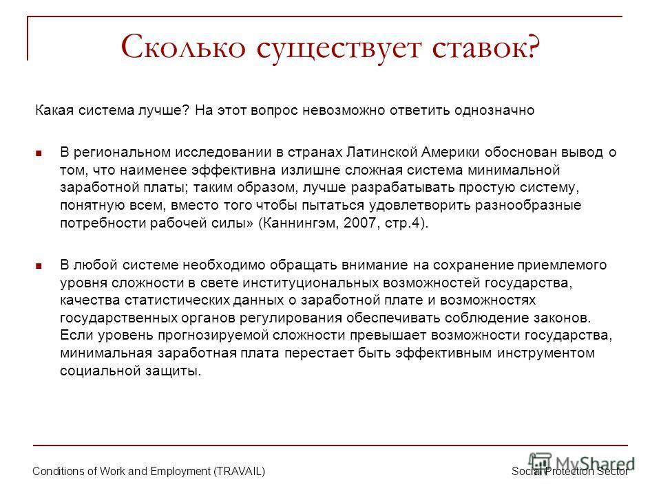 Conditions of Work and Employment (TRAVAIL) Social Protection Sector Сколько существует ставок? Какая система лучше? На этот вопрос невозможно ответить однозначно В региональном исследовании в странах Латинской Америки обоснован вывод о том, что наим