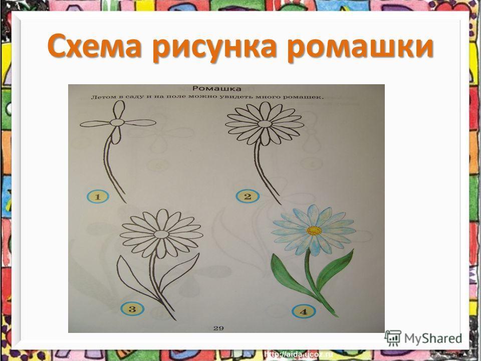 Схема рисунка ромашки