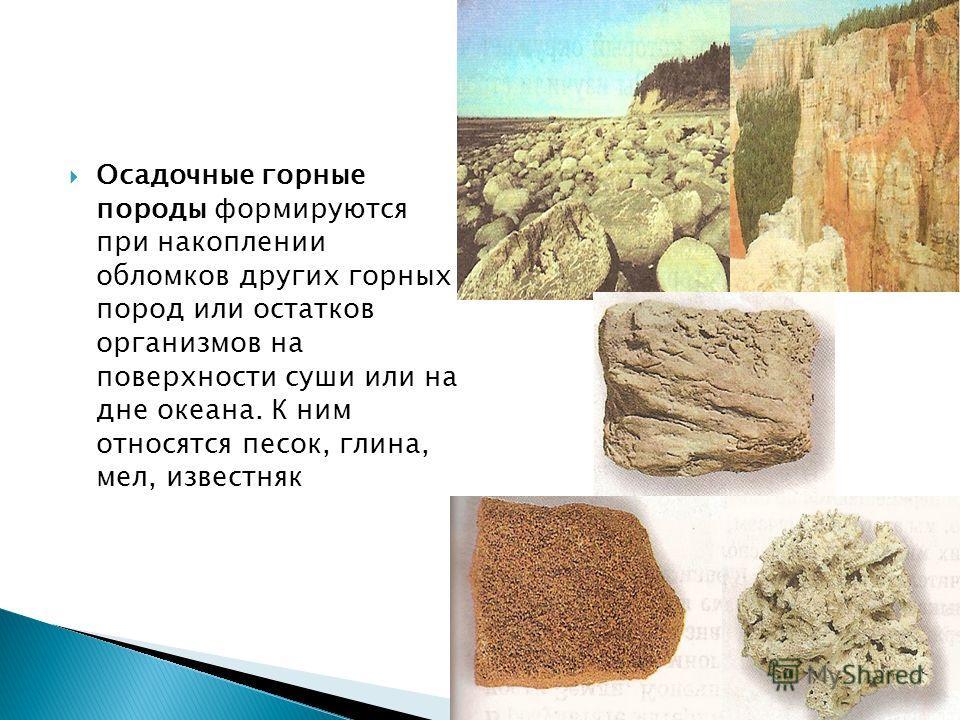 Осадочные горные породы формируются при накоплении обломков других горных пород или остатков организмов на поверхности суши или на дне океана. К ним относятся песок, глина, мел, известняк