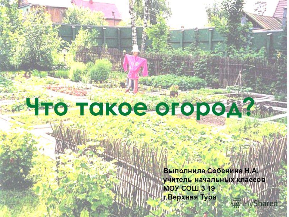 Что такое огород? Выполнила Собенина Н.А. учитель начальных классов МОУ СОШ 3 19 г.Верхняя Тура