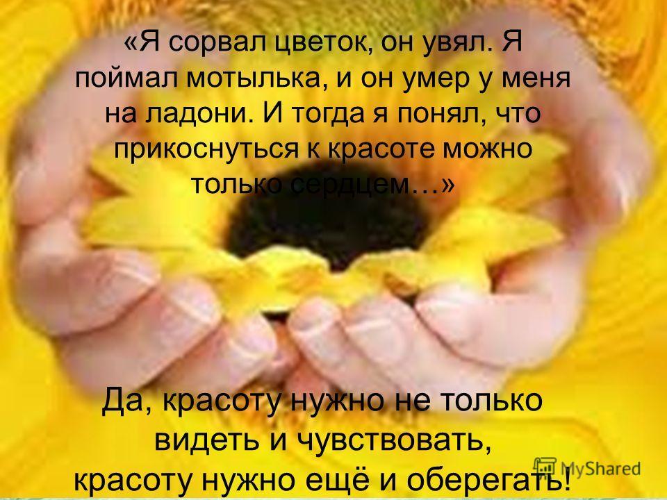 18.05.201411 «Я сорвал цветок, он увял. Я поймал мотылька, и он умер у меня на ладони. И тогда я понял, что прикоснуться к красоте можно только сердцем…» Да, красоту нужно не только видеть и чувствовать, красоту нужно ещё и оберегать!