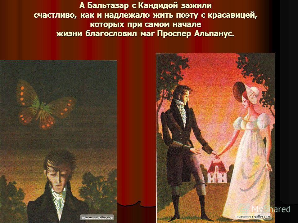 А Бальтазар с Кандидой зажили счастливо, как и надлежало жить поэту с красавицей, которых при самом начале жизни благословил маг Проспер Альпанус.