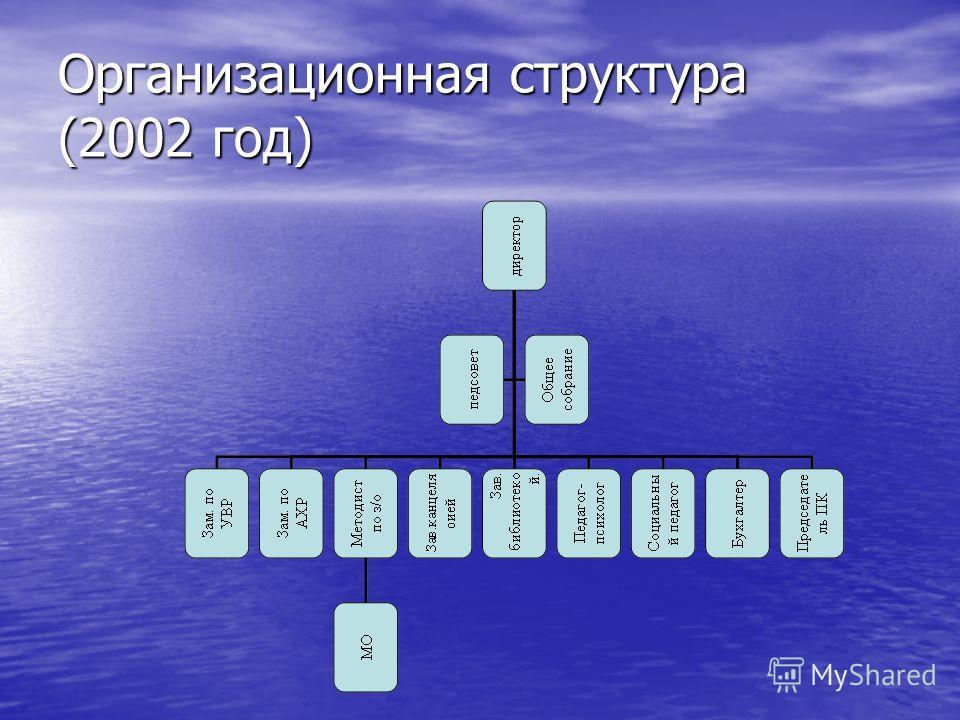 Организационная структура (2002 год)