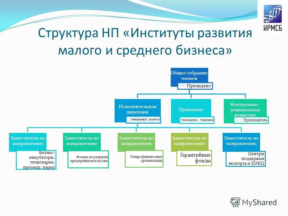 Структура НП «Институты