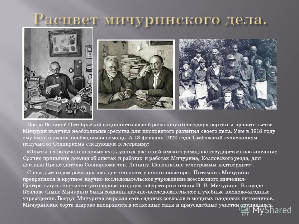 После Великой Октябрьской социалистической революции благодаря партии и правительства Мичурин получил необходимые средства для плодовитого развития своего дела. Уже в 1918 году ему была оказана необходимая помощь. А 18 февраля 1922 года Тамбовский гу