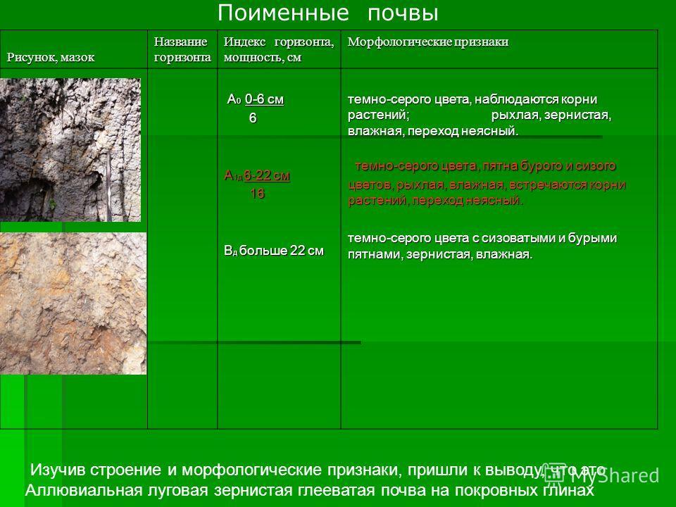 Поименные почвы Рисунок, мазок Название горизонта Индекс горизонта, мощность, см Морфологические признаки А 0 0-6 см А 0 0-6 см 6 А 1д 6-22 см 16 16 В д больше 22 см темно-серого цвета, наблюдаются корни растений; рыхлая, зернистая, влажная, переход