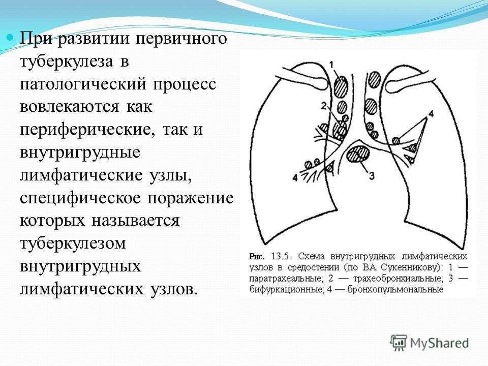 При развитии первичного туберкулеза в патологический процесс вовлекаются как периферические, так и внутригрудные лимфатические узлы, специфическое поражение которых называется туберкулезом внутригрудных лимфатических узлов.