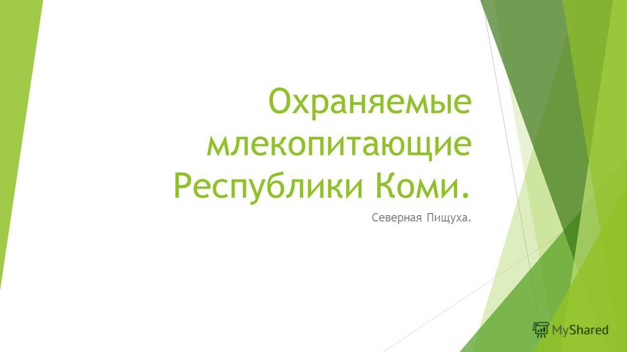 Охраняемые млекопитающие Республики Коми. Северная Пищуха.