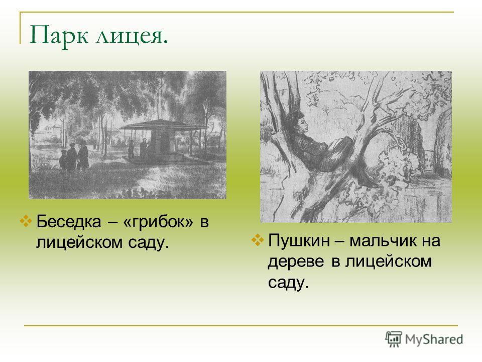 Парк лицея. Беседка – «грибок» в лицейском саду. Пушкин – мальчик на дереве в лицейском саду.