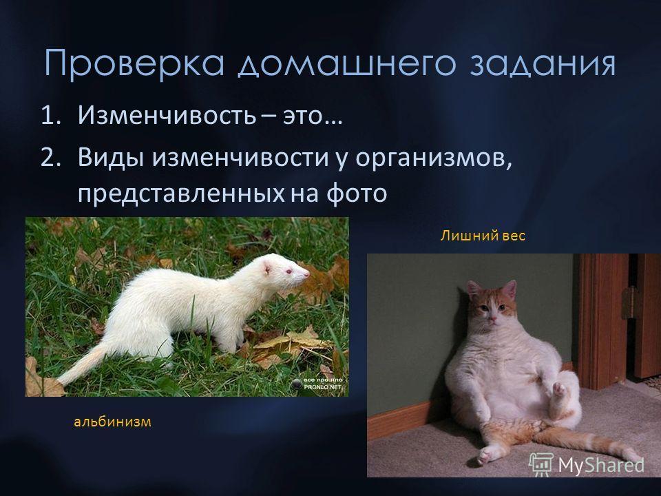 Проверка домашнего задания 1.Изменчивость – это… 2.Виды изменчивости у организмов, представленных на фото альбинизм Лишний вес 2