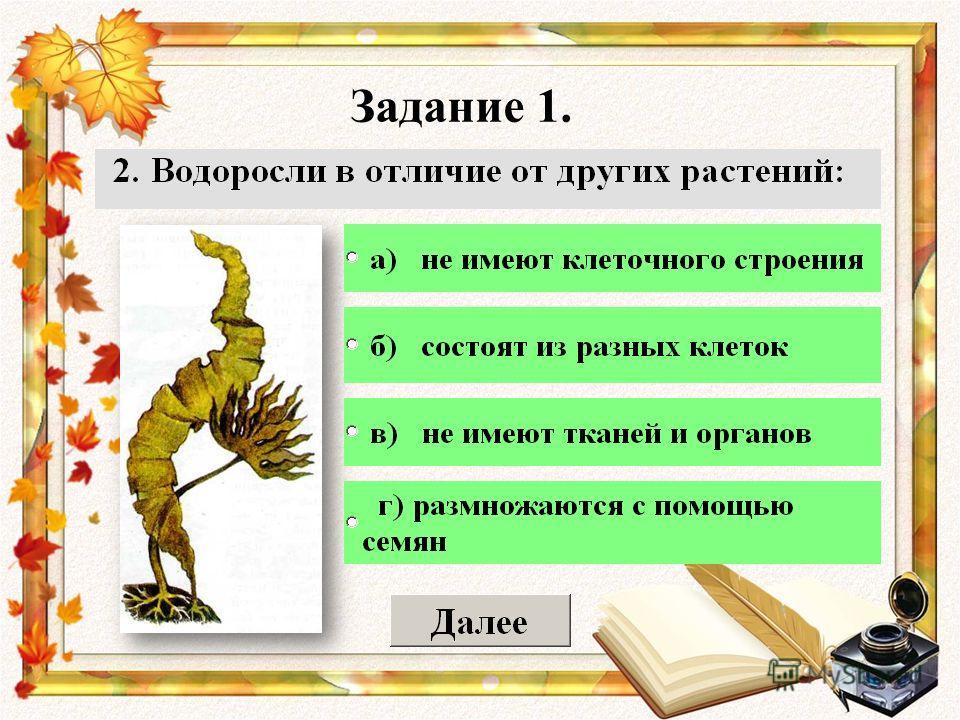 Олимпиадные задание по биологии растения 8 класс