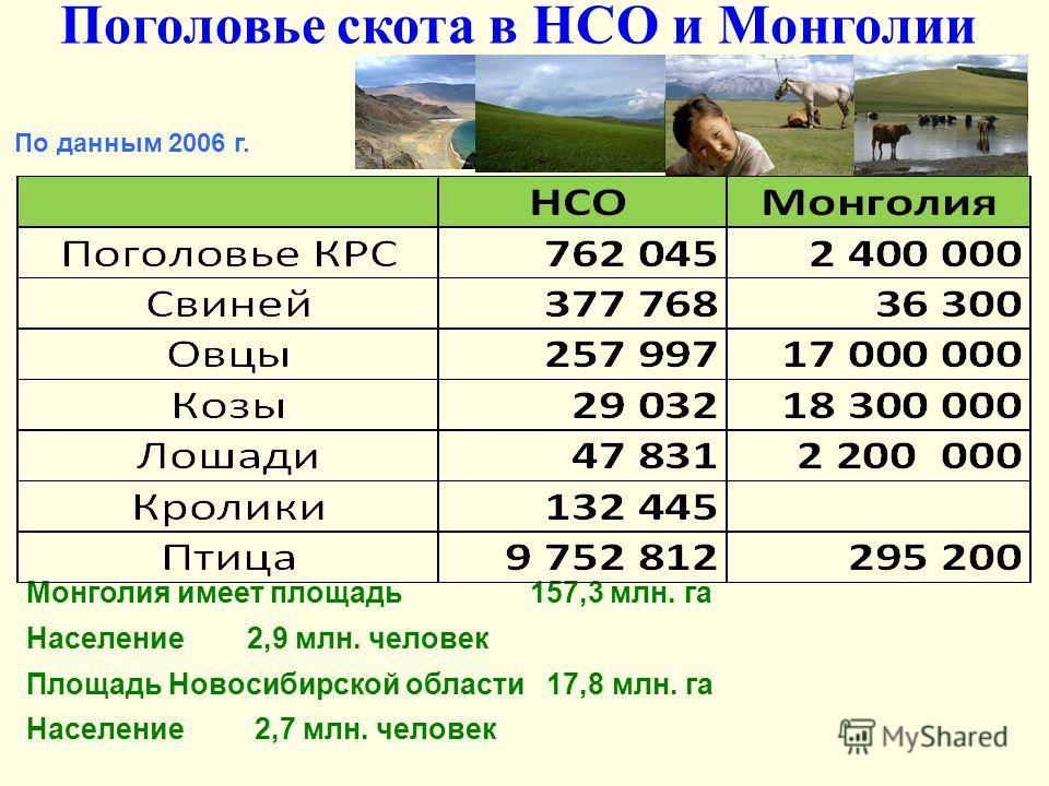 Поголовье скота в НСО и Монголии По данным 2006 г. Монголия имеет площадь 157,3 млн. га Население 2,9 млн. человек Площадь Новосибирской области 17,8 млн. га Население 2,7 млн. человек