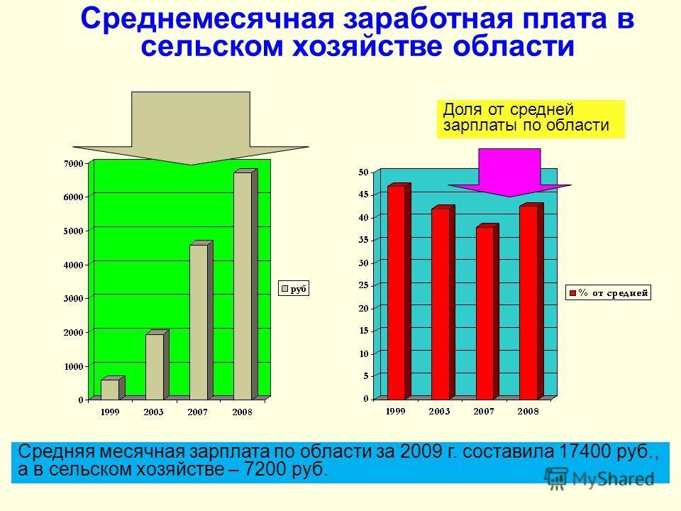 Среднемесячная заработная плата в сельском хозяйстве области Доля от средней зарплаты по области Средняя месячная зарплата по области за 2009 г. составила 17400 руб., а в сельском хозяйстве – 7200 руб.