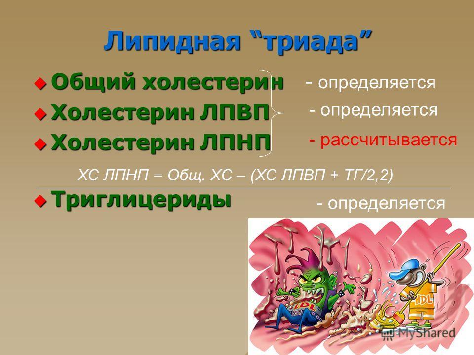 Липидная триада Общий холестерин Общий холестерин Холестерин ЛПВП Холестерин ЛПВП Холестерин ЛПНП Холестерин ЛПНП Триглицериды Триглицериды ХС ЛПНП = Oбщ. XC – (ХС ЛПВП + ТГ/2,2) - определяется - рассчитывается - определяется
