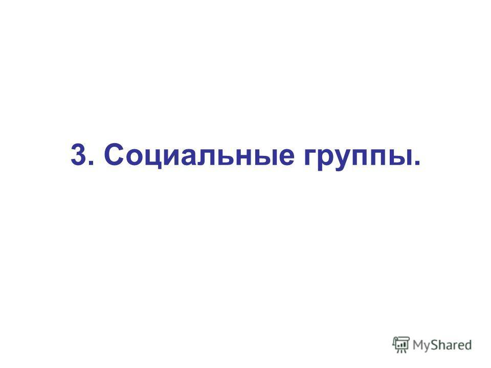3. Социальные группы.