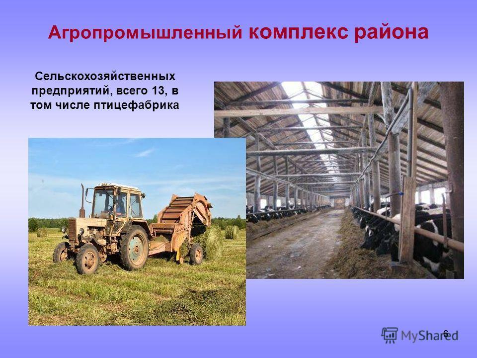 66 Агропромышленный комплекс района Сельскохозяйственных предприятий, всего 13, в том числе птицефабрика
