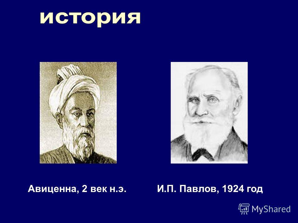 Авиценна, 2 век н.э.И.П. Павлов, 1924 год
