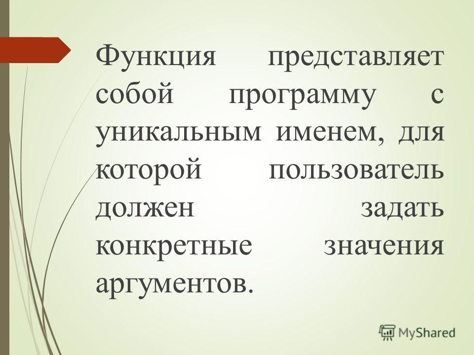 Функция представляет собой программу с уникальным именем, для которой пользователь должен задать конкретные значения аргументов.