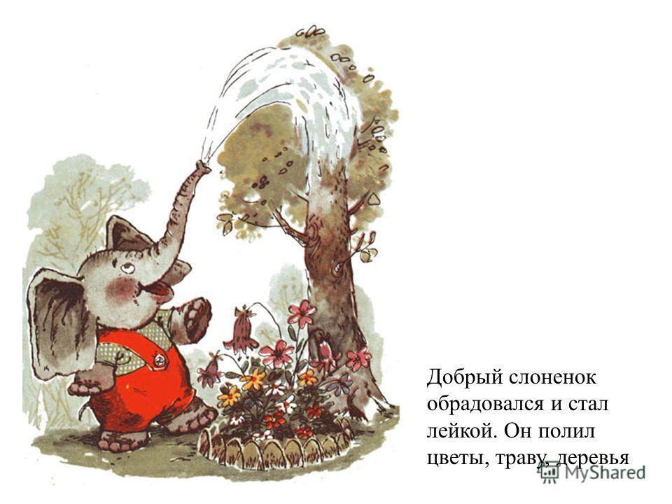 Добрый слоненок обрадовался и стал лейкой. Он полил цветы, траву, деревья
