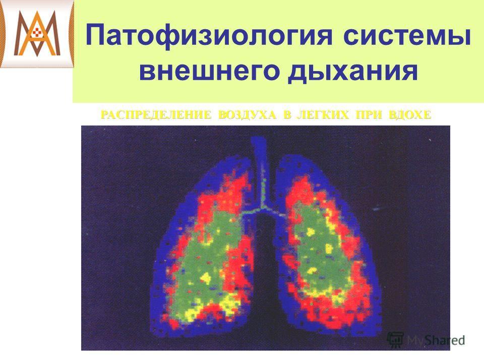 Патофизиология системы внешнего дыхания