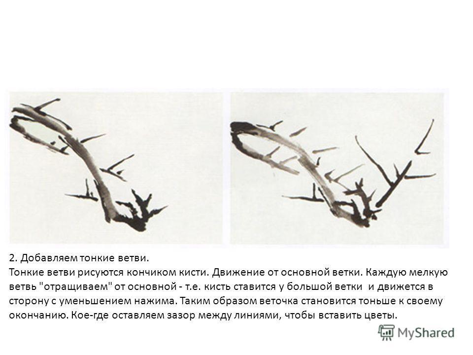 2. Добавляем тонкие ветви. Тонкие ветви рисуются кончиком кисти. Движение от основной ветки. Каждую мелкую ветвь