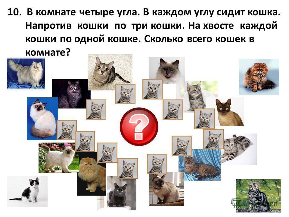 10. В комнате четыре угла. В каждом углу сидит кошка. Напротив кошки по три кошки. На хвосте каждой кошки по одной кошке. Сколько всего кошек в комнате?
